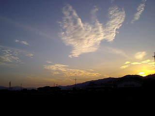 Wing01_3