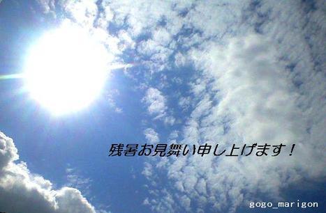 Summer_08_00