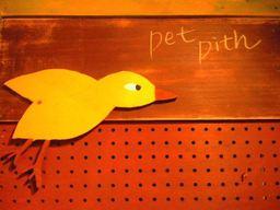 Pet_pith_01